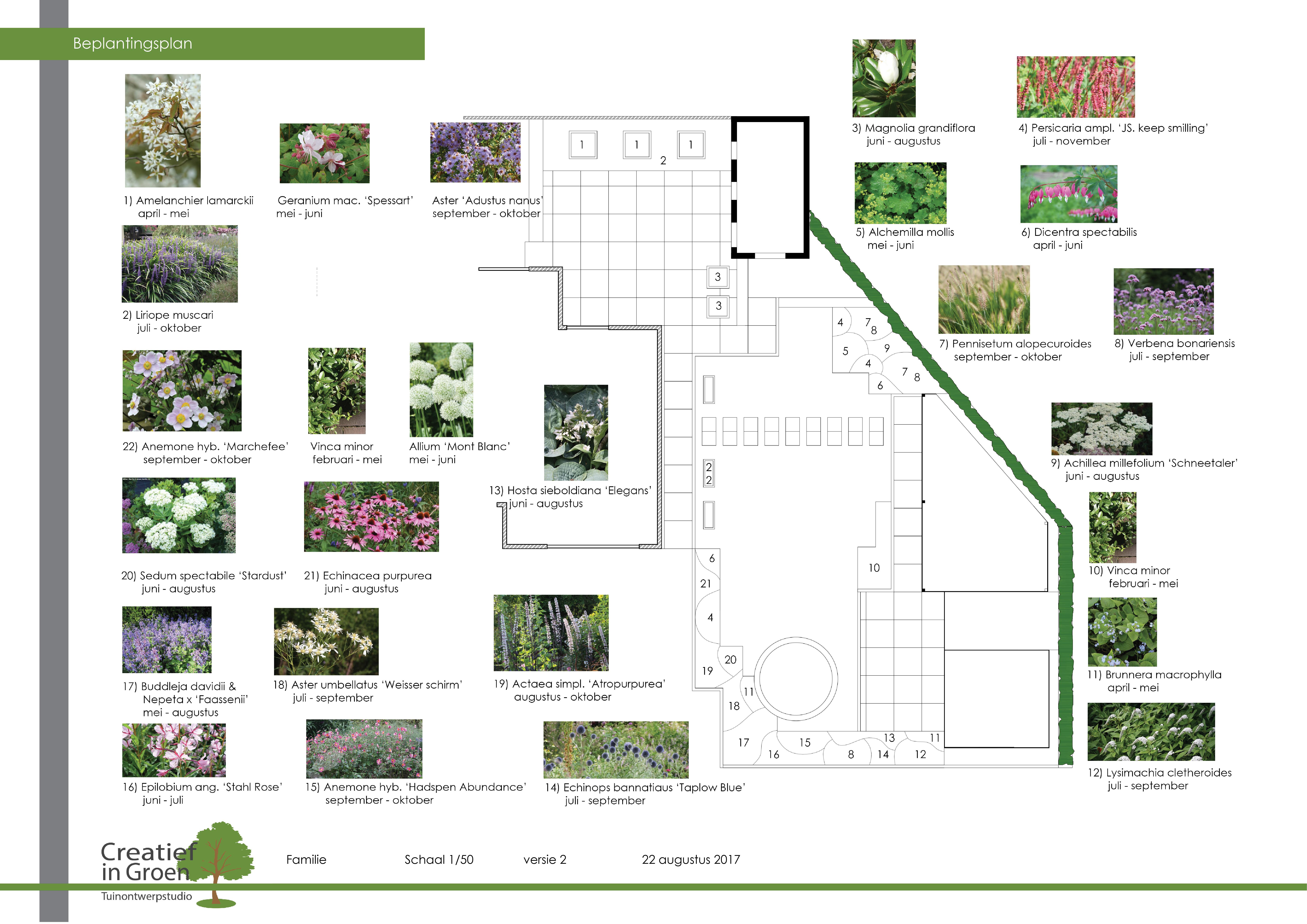 beplantingsplan-creatief-in-groen